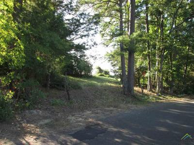 Tyler Commercial For Sale: County Road 2191 (Oscar Burkett Rd)