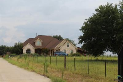 Lindale Single Family Home For Sale: 23211 Fm 1995