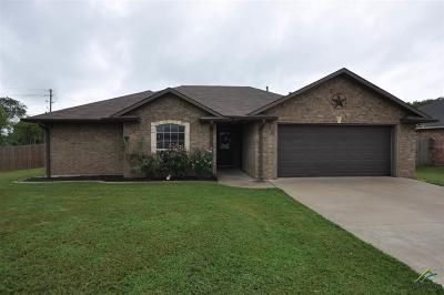 Flint Single Family Home For Sale: 11169 Twin Spires Dr