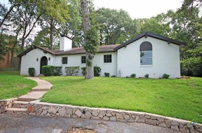 Tyler Single Family Home For Sale: 4120 Fry
