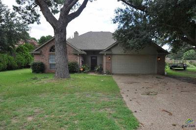 Flint Single Family Home For Sale: 21219 Dogwood Dr