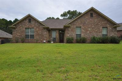 Tyler Single Family Home For Sale: 3032 Cornerstone Trail