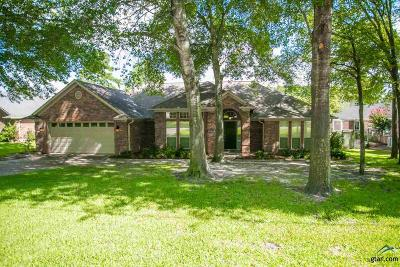 Tyler Single Family Home Contingent - Active: 11226 Chasewood Dr