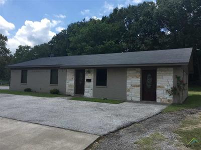 Commercial For Sale: 17044 Fm 2493