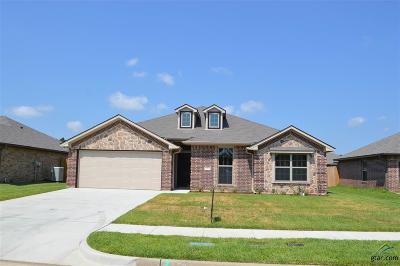 Tyler Single Family Home For Sale: 325 Omaha