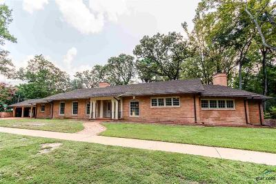Tyler Single Family Home For Sale: 553 Park Heights Circle