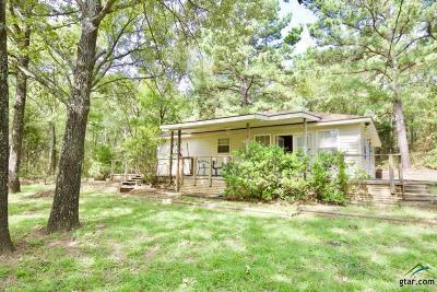 Tyler Single Family Home For Sale: 13546 Fm 3271