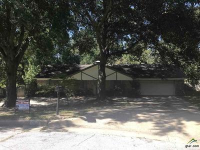 Tyler Single Family Home For Sale: 6701 Vivian Ct