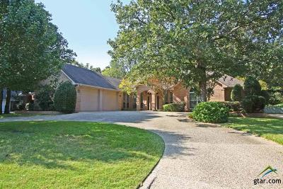 Tyler Single Family Home For Sale: 4105 Lazy Creek