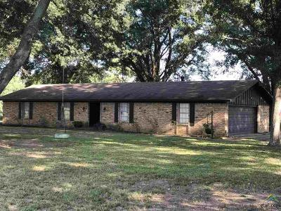Whitehouse Single Family Home For Sale: 12767 County Road 282