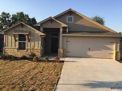 Chandler Single Family Home For Sale: 109 Collin Drive