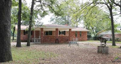 Lindale Single Family Home For Sale: 233 Hideaway Lane East