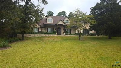 Flint Single Family Home For Sale: 17822 Summerhill Circle