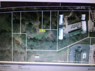 Lindale Commercial For Sale: 13593 County Road 472
