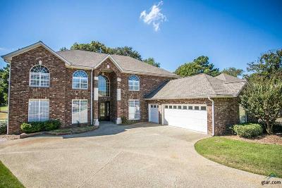 Tyler Single Family Home For Sale: 460 Bunker