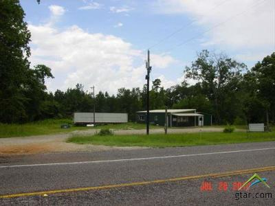 Tyler Commercial For Sale: 23450 E Hwy 31