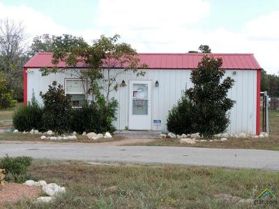 Lindale Commercial For Sale: 19400 Hwy 69 N