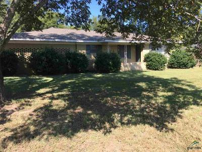 Whitehouse Single Family Home For Sale: 1101 E Main Street