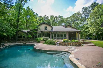 Single Family Home For Sale: 260 Saddle Creek Dr.