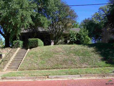 Tyler Single Family Home For Sale: 416 S Bois D Arc