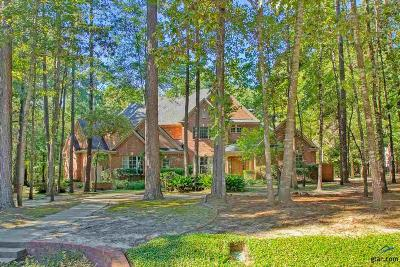 Single Family Home For Sale: 3897 Brighton Creek Circle