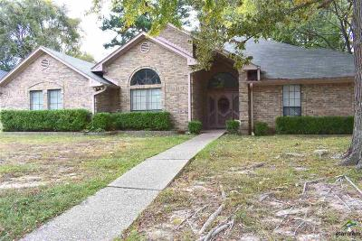Tyler Single Family Home For Sale: 3101 Williamsburg Circle