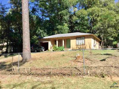 Tyler Single Family Home For Sale: 504 S Parkdale Dr.