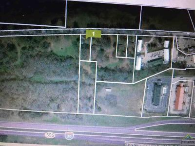 Lindale Commercial For Sale: Interstate 20