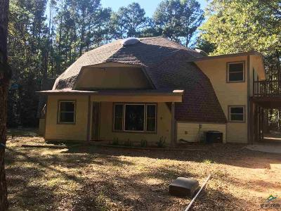 Whitehouse Single Family Home For Sale: 10278 County Road 2167 (Jim Russell Rd.)