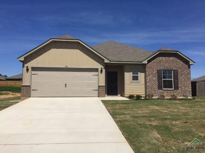 Chandler Single Family Home For Sale: 104 Haley Lane