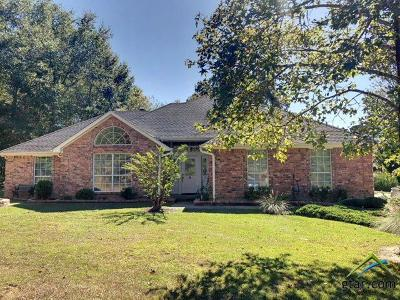 Whitehouse Single Family Home For Sale: 13134 County Road 2220