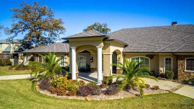 Tyler Single Family Home For Sale: 7120 Nottaway Drive