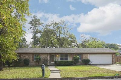 Tyler Single Family Home For Sale: 3809 Pine Manor Drive