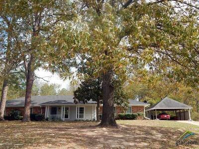 Lindale Single Family Home For Sale: 17508 County Road 4174 E