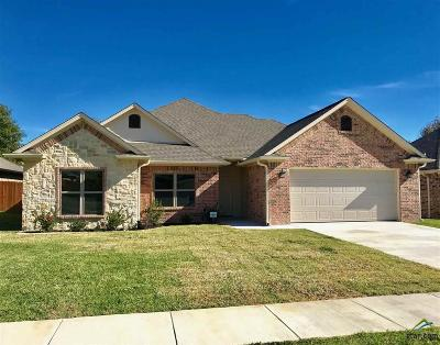 Tyler Single Family Home For Sale: 470 Omaha Avenue