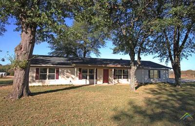 Whitehouse Single Family Home For Sale: 13234 County Road 2134