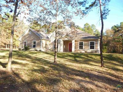 Tyler Single Family Home For Sale: 15349 Lakeside Dr