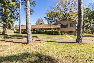 Tyler Single Family Home For Sale: 9061 Pleasant Hollow Rd