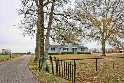 Tyler Single Family Home For Sale: 9224 County Road 414