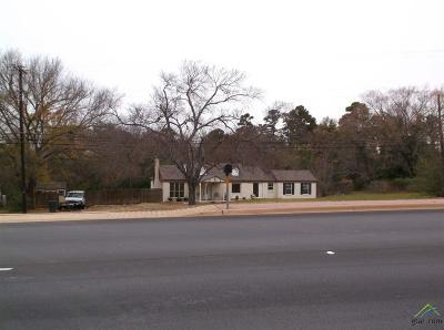 Tyler Single Family Home For Sale: 2701 Frankston Highway