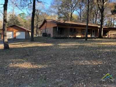 Tyler Single Family Home For Sale: 11059 County Road 290