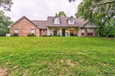 Tyler Single Family Home For Sale: 9995 County Road 417