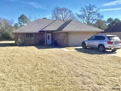 Tyler Single Family Home For Sale: 156 County Road 238