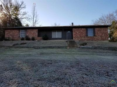 Tyler Single Family Home For Sale: 13997 County Road 1250