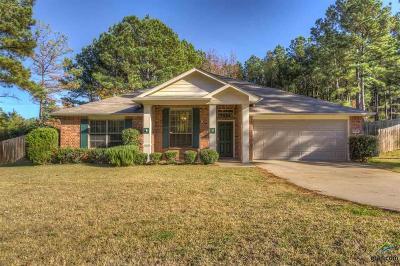 Tyler Single Family Home For Sale: 12328 Wild Horse