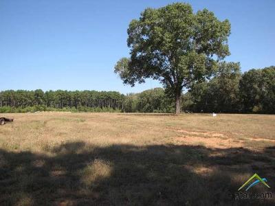 Acreage For Sale: County Road 3405