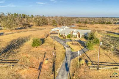 Lindale Single Family Home For Sale: 15500 County Road 431