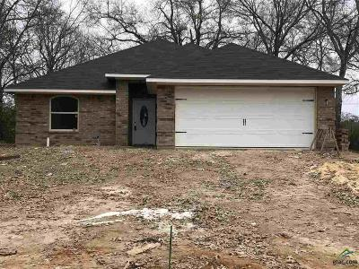 Tyler Single Family Home For Sale: 2013 Woodlawn