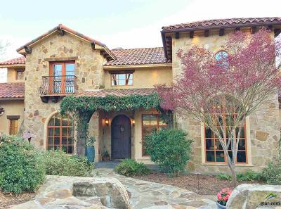 Tyler Single Family Home For Sale: 4406 Cascades Blvd