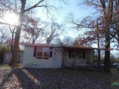 Tyler Single Family Home For Sale: 1327 Dobbs Terrace